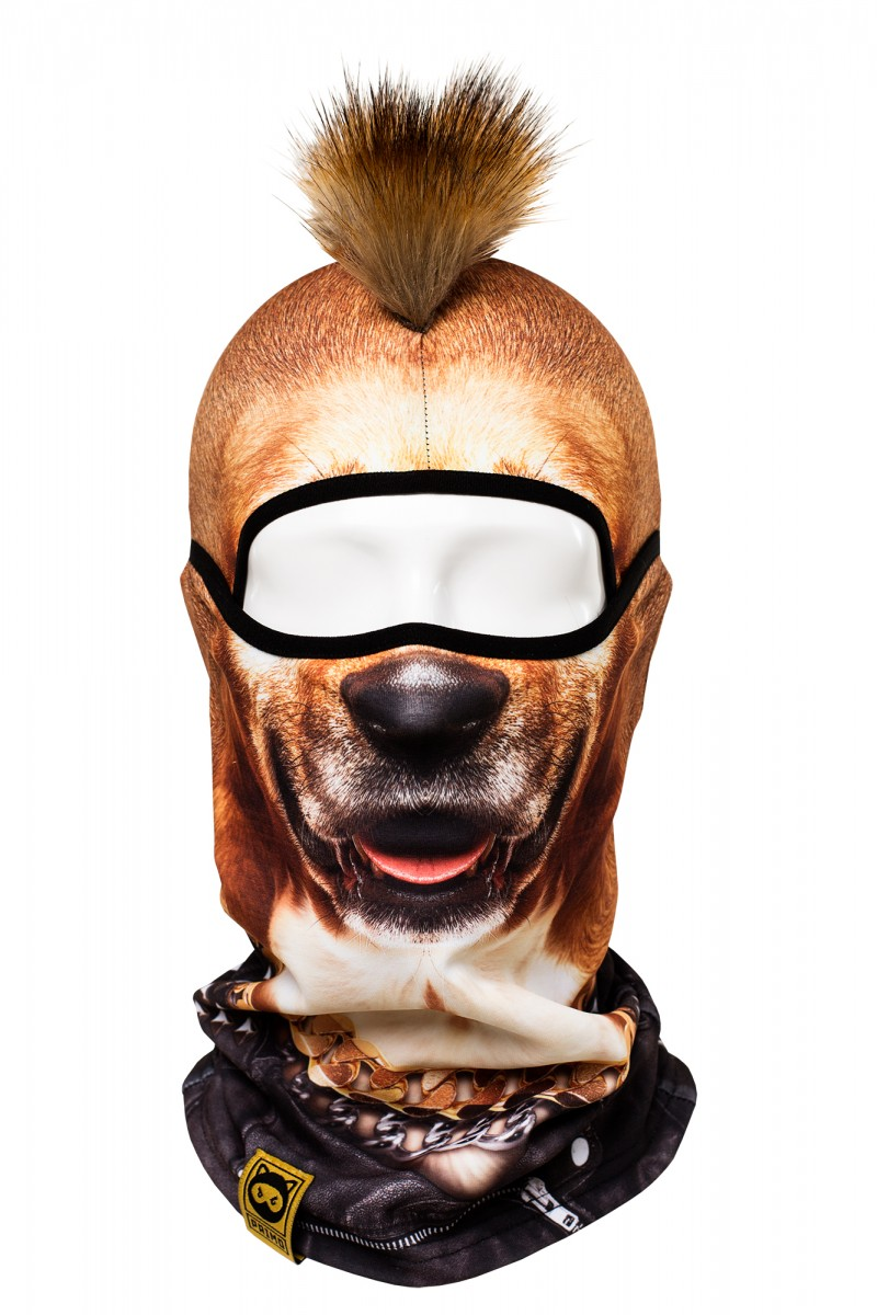 Mohawk-Rock-Dog